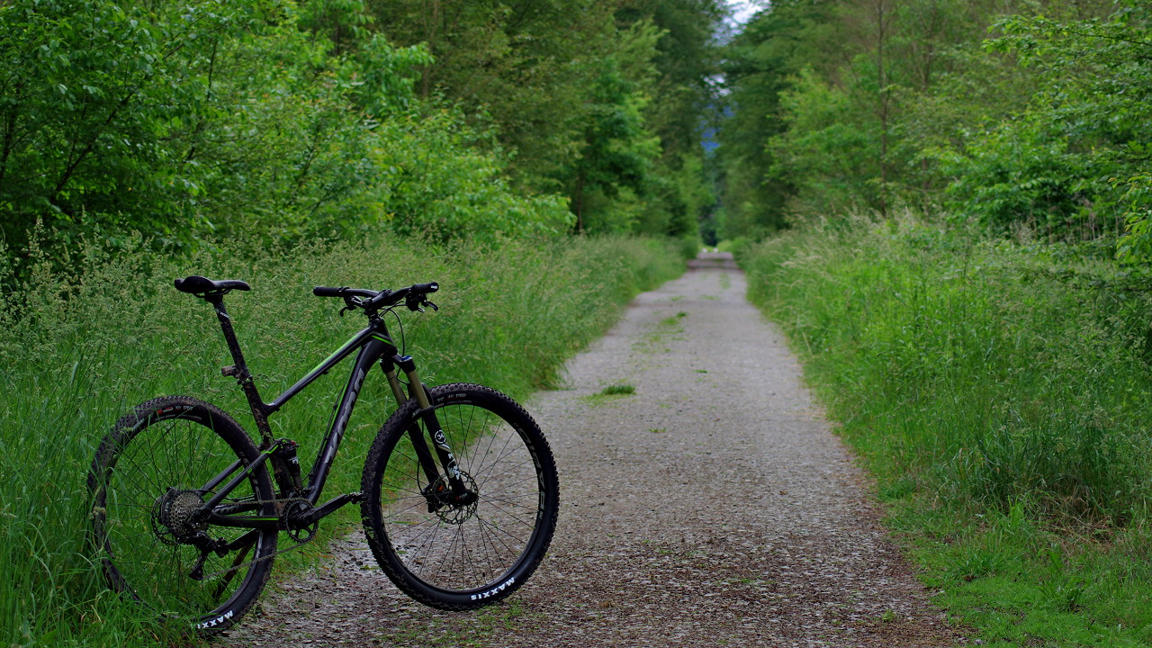 Kona Hei Hei DL Trail auf einer Forststraße