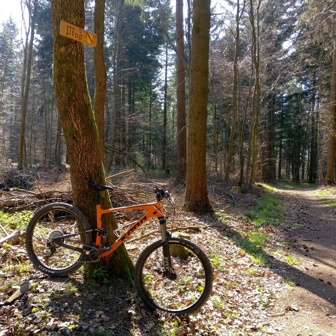 2017 Kona Hei Hei Trail am d'Pfad in Malsch