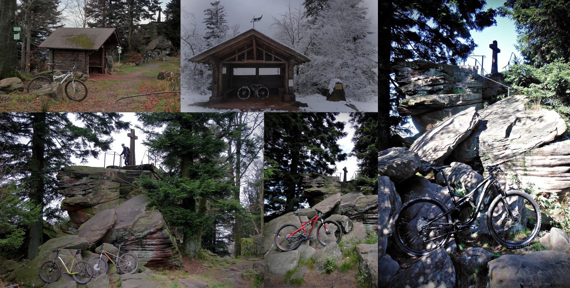 Diverse Mountainbikes vor Bernsteinfels