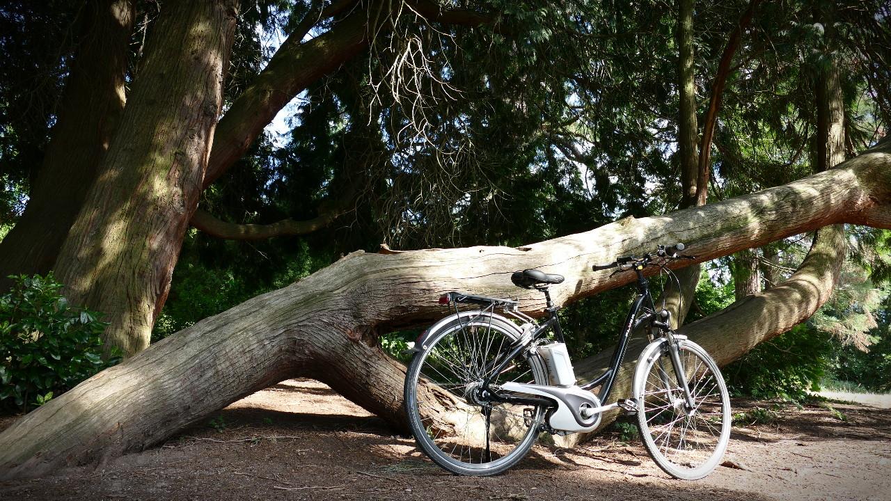 Gebrauchtes E-Bike Flyer