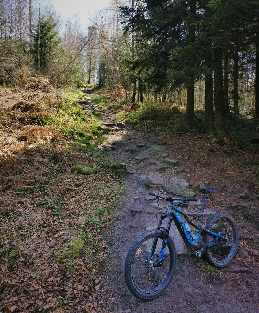 Trail zum mahlbergturm