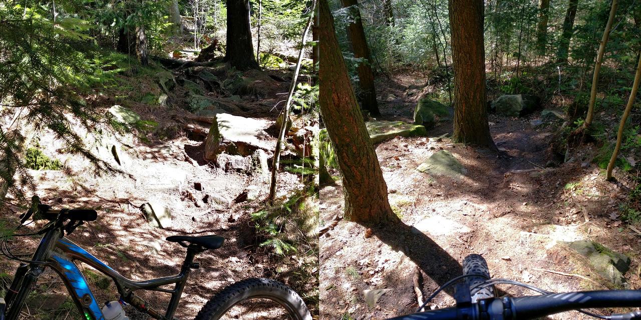 schwieriger Trail mit Turbo Levo FSR 6Fattie